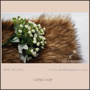 Thảm lông dài màu lông cọp - Lông dài cao cấp chuyên trong chụp ảnh, trang trí